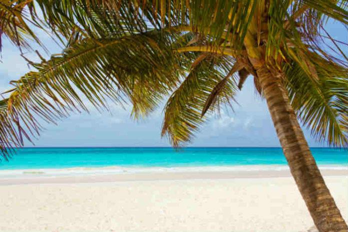 beach-beautiful-blue-coast-40976