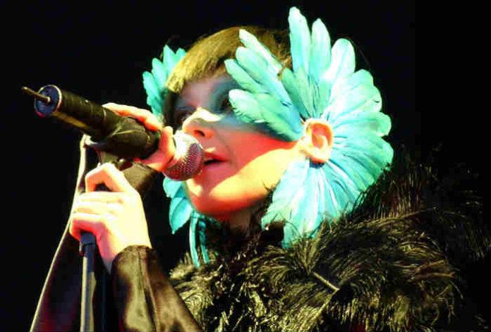 Björk_-_Hurricane_Festival